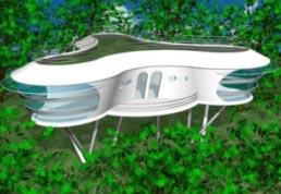 Futuristic hut