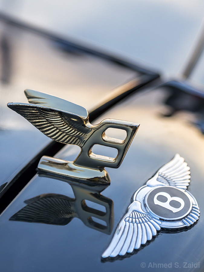 Bentley Continental wings emblem