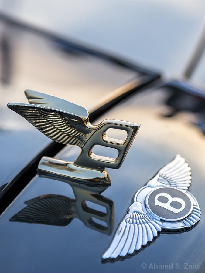Bentley Continental wings emblem