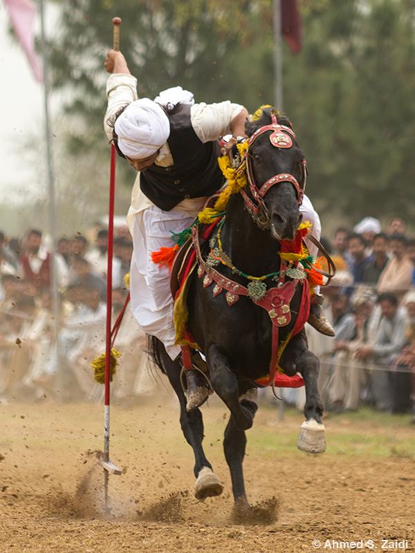 Tent pegging Pakistani sport
