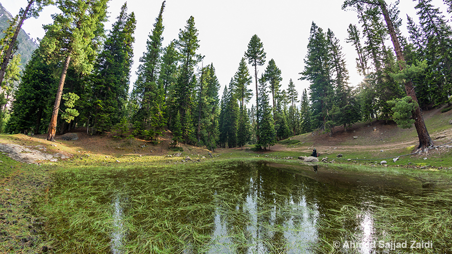 Rama, Astore, forest pond